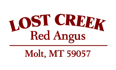 Lost Creek Red Angus